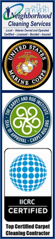 Professional Carpet Cleaning Alexandria Va Professional